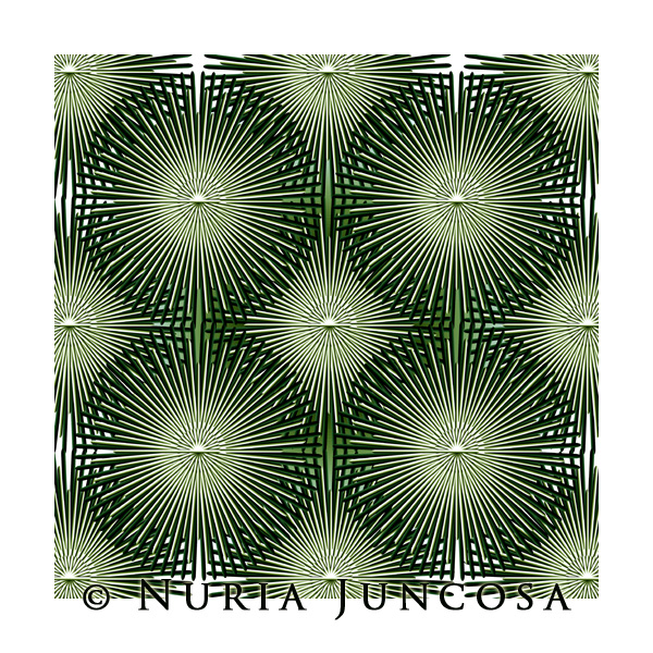 AGAVE by Nuria Juncosa